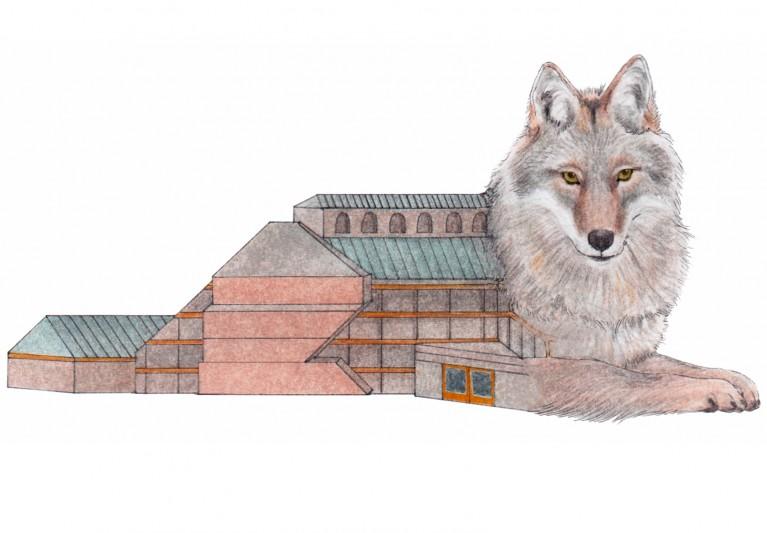 Urban Ecology of Los Angeles Mammals: Biodiversity, Pathogen Risks, and Public Perceptions
